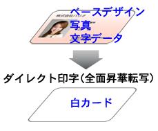 白カード1
